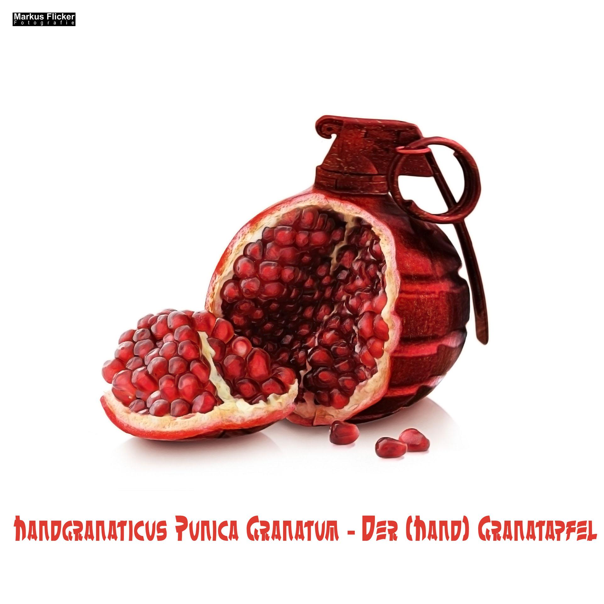 Handgranaticus Punica Granatum -- Der (Hand) Granatapfel - Photoshop Compositing #markusflicker