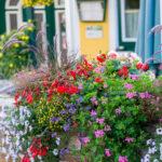Wellness-Pension Florianihof in Miesenbach Steiermark