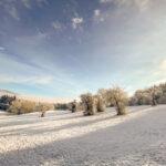 Winter in der Steiermark