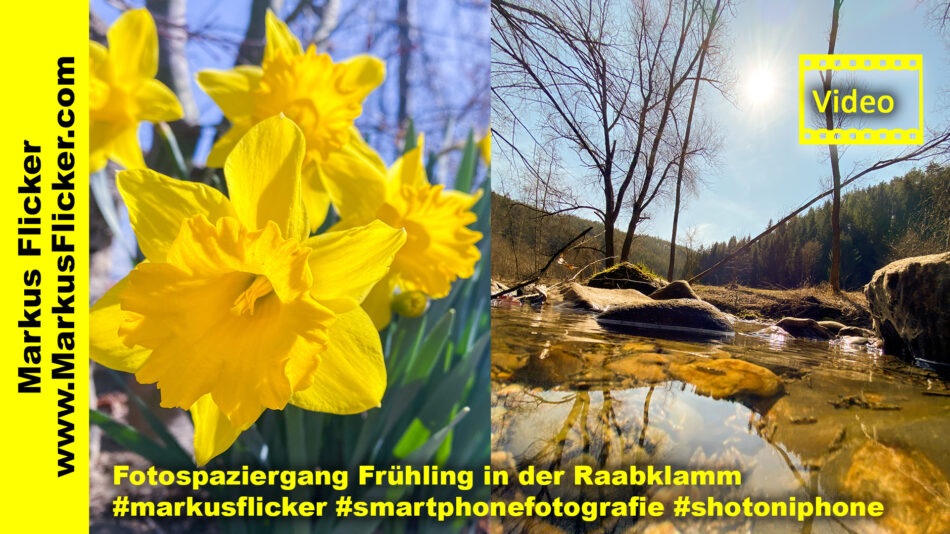 Fotospaziergang Frühling in der Raabklamm #markusflicker #smartphonefotografie #shotoniphone