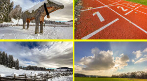 Quicktipp #11 Weitwinkel Optik im Smartphone #SmartphoneFotografie