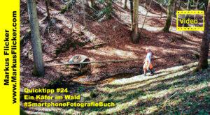 Quicktipp #24 Ein Käfer im Wald #SmartphoneFotografieBuch